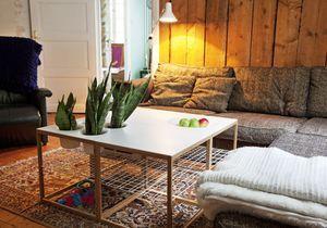 Pots de fleurs indoor : notre sélection