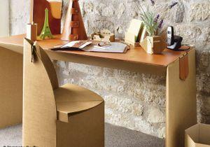 Pourquoi les meubles en carton cartonnent?