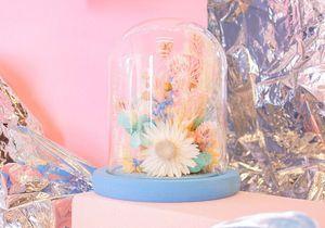 Fleurs séchées sous cloche, la tendance déco qu'il nous faut