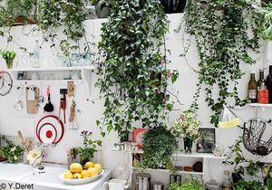 Un jardin dans ma maison