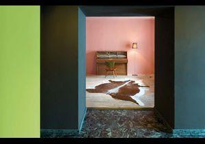 Le rose de Le Corbusier sur mes murs !