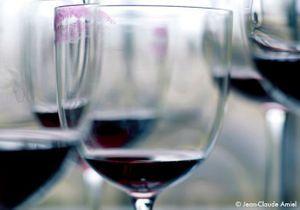 10 vins top à petits prix