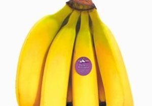 Que faire avec des bananes montagnes ?
