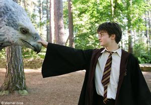 Bientôt un neuvième « Harry Potter » ?