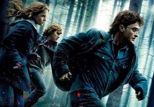 Harry Potter 7 : cinq bonnes raisons d'y aller