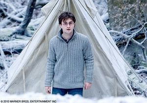 """""""Harry Potter 7"""" : le box-office français est sous le charme"""