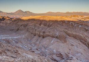 Au Chili, un désert habituellement aride s'est (re)mis à fleurir et c'est magnifique