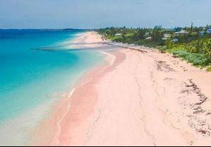 Découvrez l'unique plage de sable rose du monde