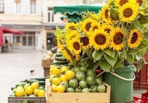Voici le marché de France le plus instagrammable de l'année