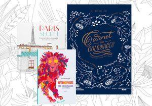 Livres de coloriage antistress : les meilleures sorties de la saison