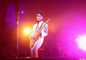 Prince a enflammé le Grand Palais !