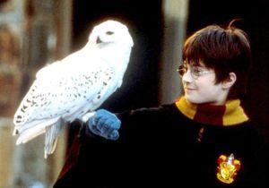 #PrêtàLiker : quand le fils de Harry Potter fait sa rentrée à Poudlard