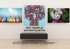 Prix Tremplin ArtPhotoLimited : votez pour votre photographe préféré