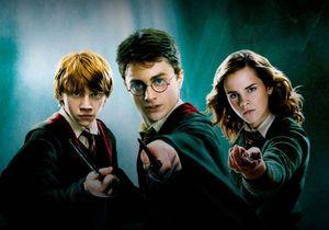 Harry Potter : l'annonce que tous les fans attendaient avec impatience !