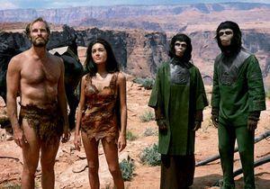 TV : ce soir, on ne rate pas l'intégrale « La Planète des singes »