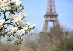 Que faire à Paris ce week-end du 28, 29, 30 avril et 1er mai ?