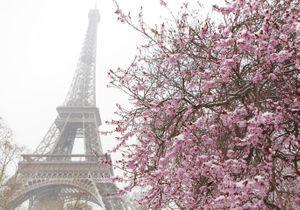 Que faire à Paris ce week-end du 8-9-10 avril ?