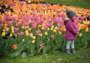 10 idées de sortie pour le week-end de Pâques