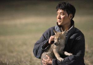 TV : ce soir, on assiste à une belle histoire d'amitié en regardant « Le Dernier Loup »