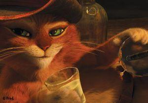 « Le Chat Potté » : découvrez un extrait en exclusivité
