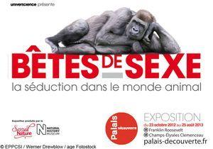 « Bêtes de sexe », une exposition très animale