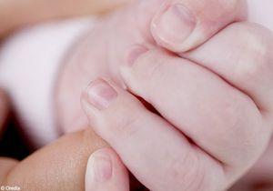1 enfant sur 20 né grâce à l'assistance médicale