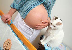 Grossesse : le contact avec un animal réduirait le risque d'allergies