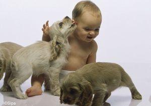Un chien pour protéger son bébé des infections ?