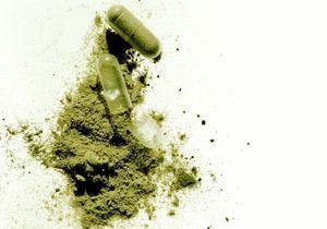 Compléments alimentaires et phytothérapie : les algues pour garder la ligne