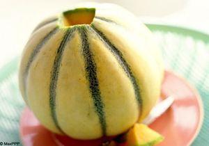 Focus nutrition: le melon