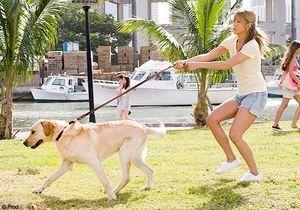 Je fais du sport avec mon chien