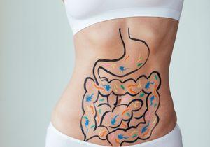 Microbiote : Comment les prébiotiques équilibrent la flore intestinale ?