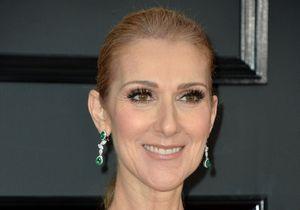 Céline Dion : son look sexy pour prendre l'avion