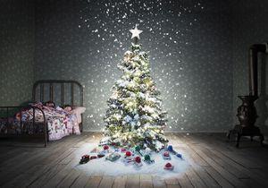 Voici la décoration de Noël que TOUS les Français voudront sur leur sapin