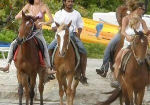Amy Winehouse : une pétition pour l'expulser de Ste Lucie !