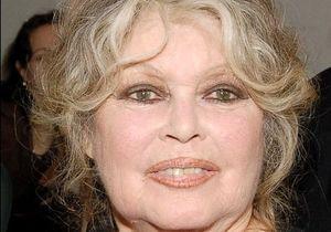 Brigitte Bardot, candidate à la présidentielle 2012 ?
