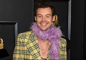 Harry Style déguisé en sirène : ces photos inédites affolent les fans
