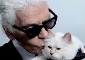 Karl Lagerfeld : l'hommage de son chat Choupette à son maître disparu