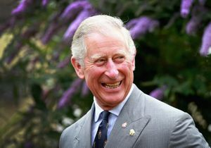 Le prince Charles effrayé par un aigle au cours d'une visite officielle
