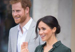 Meghan Markle et le prince Harry : les premiers détails sur leur biographie à venir