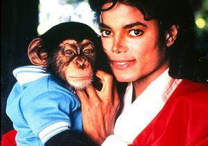 Michael Jackson accusé d'avoir maltraité son singe