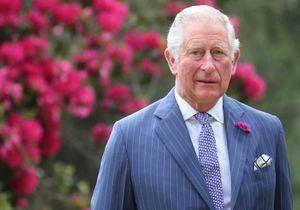 Prince Charles : guéri du coronavirus, il s'adresse aux Britanniques sur les réseaux sociaux