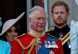 Prince Harry : sa ressemblance avec le Prince Charles lorsqu'il était jeune est frappante