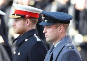 Princes William & Harry : cet événement auquel ils vont devoir se retrouver