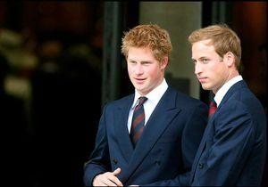 William et Harry : itinéraire d'un divorce fraternel