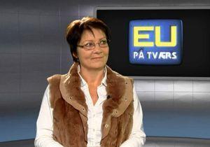 Danemark : une députée appelle à préférer les prostituées « locales »