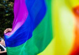 Bientôt une union civile pour les homosexuels dans toute l'Europe ?