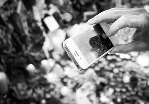 Les réseaux sociaux : l'union face à la terreur