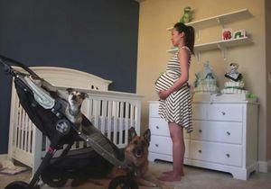 #PrêtàLiker : il photographie sa femme chaque jour de sa grossesse