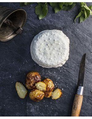 Recettes au fromage de brebis